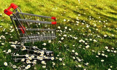 shopping-2291966_640